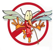 Diệt Muỗi Tại Quận 9