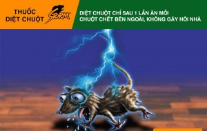 chuyen ban thuoc diet chuot storm