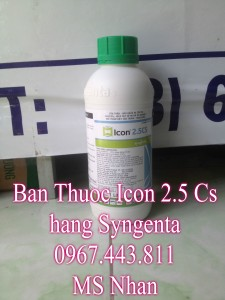 Icon  2.5 Cs Thuy Sy